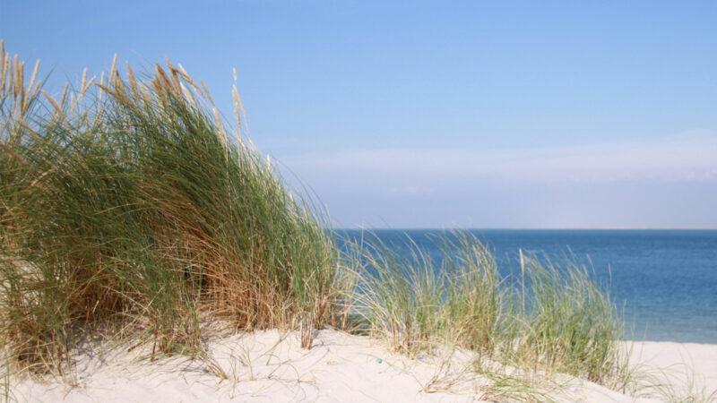 Werbeagentur Norddeutschland Sylt Ostsee