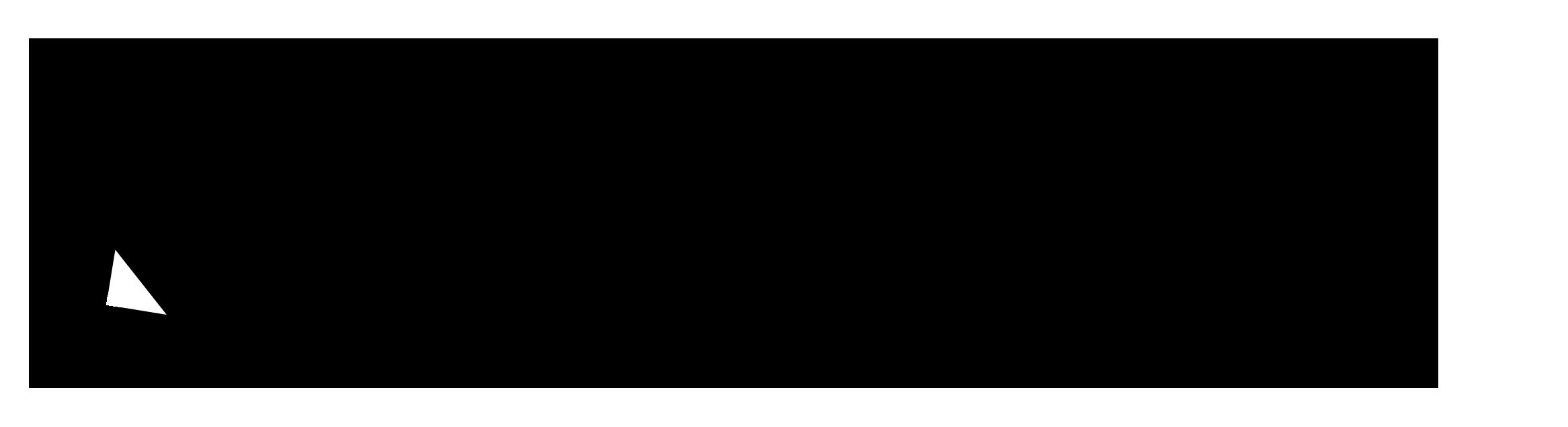 Ecksclusive International Business Development Logo pxmedia