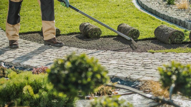 Grüne Dienste Rostock Garten Bau