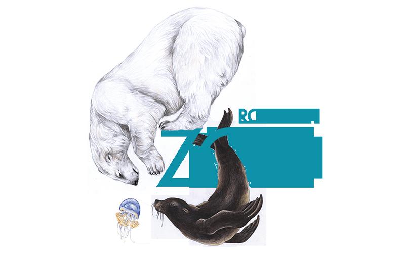 Zoo Rostock Werbeagentur