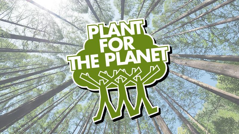Blog Bäume Pflanzen Agentur