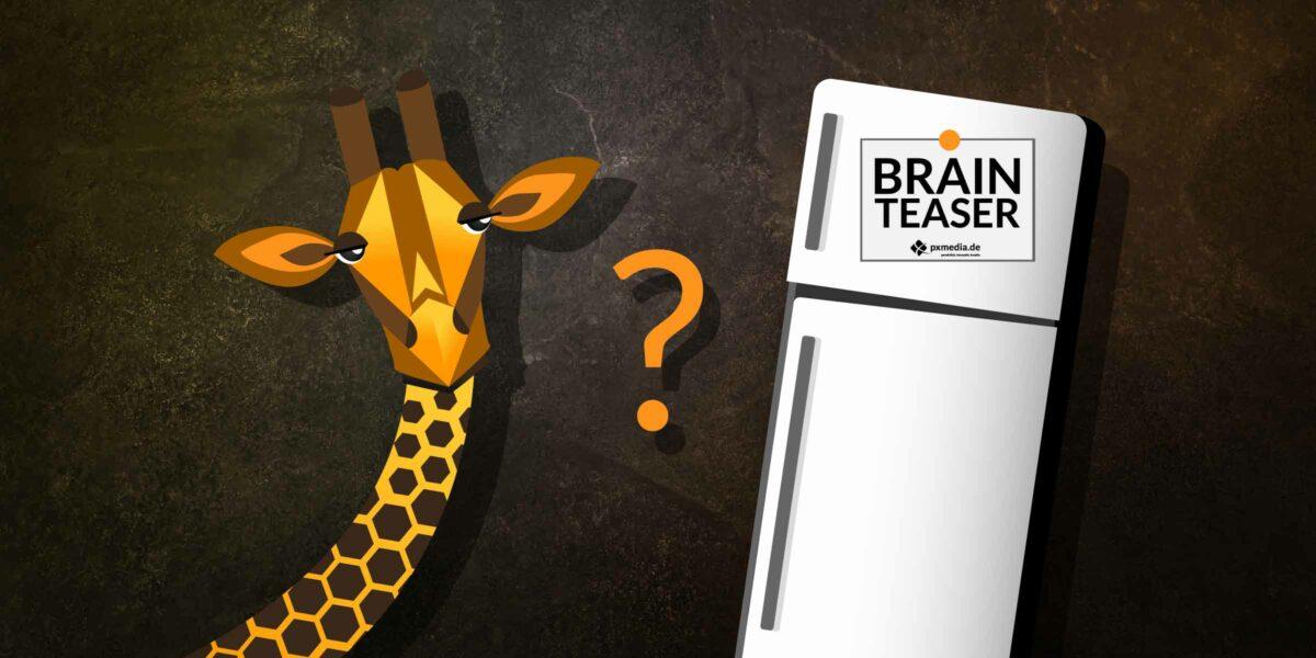 Brainteaser Vorstellungsgespräch Giraffe In Kühlschrank