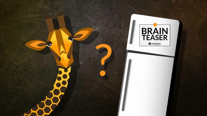 Brainteaser Vorstellungsgespräch Giraffe In Kühlschrank Pxmedia